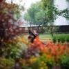 Млади влюбени в парка на о. Маргарет