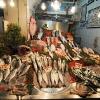 Рибна сергия