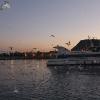 Sunset nearby Rambla de Mar